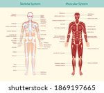 complete educational guide...   Shutterstock .eps vector #1869197665
