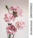 pink carnation flower taken in... | Shutterstock . vector #1869330622