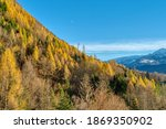 rocky mountains and autumnal... | Shutterstock . vector #1869350902