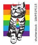 kitten with rainbow background...   Shutterstock .eps vector #1869519115