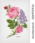 vintage card with floral drawn... | Shutterstock .eps vector #186955916