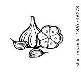 garlic set. hand drawn...   Shutterstock .eps vector #1869746278