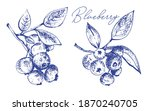blueberries with leaves on a... | Shutterstock .eps vector #1870240705