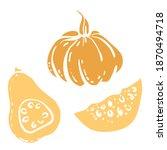squash  pumpkin  butternut... | Shutterstock .eps vector #1870494718
