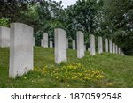 War Graves In A Military...