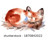 Watercolor Cute Sleeping Fox...
