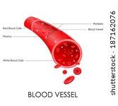 vector illustration of diagram... | Shutterstock .eps vector #187162076