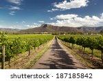 View Of Hunter Valley Vineyard...
