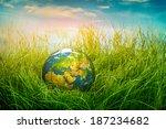 Globe Lies On Green Grass....