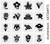 flower vector icons set on gray  | Shutterstock .eps vector #187268972