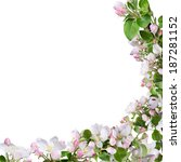 spring border background with...   Shutterstock . vector #187281152