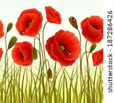 Red Romantic Poppy Flowers And...