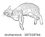 cat yawning while laying down | Shutterstock .eps vector #187318766