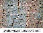 Relief Spruce Bark Texture....