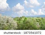 spring landscape with flowering ...   Shutterstock . vector #1873561072