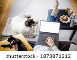 Woman At Home With Dog Hygge At ...