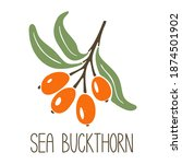 cute caption sea buckthorn... | Shutterstock .eps vector #1874501902