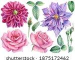 Rose Flowers  Clematis  Dahlias ...
