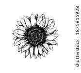 sunflower vector illustration... | Shutterstock .eps vector #1875615928