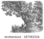 old forest | Shutterstock . vector #187582526