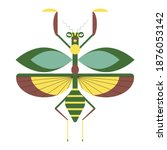 Green And Yellow Praying Mantis ...