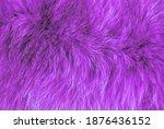 Violet Furry Texture Backdrop...