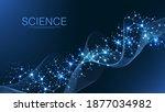 scientific molecule background... | Shutterstock .eps vector #1877034982