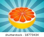 sliced half pink grapefruit...   Shutterstock .eps vector #18773434