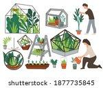 growing plants in glass...   Shutterstock .eps vector #1877735845