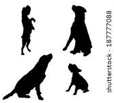 Stock vector vector silhouette of a dog on a white background 187777088