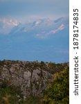 Wildlife Goral Climb Mountain...