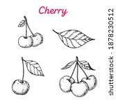 cherry hand drawn vector... | Shutterstock .eps vector #1878230512