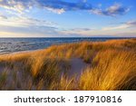 Dune Grass On Lake Michigan....