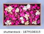 Dried White And Pink Geranium...