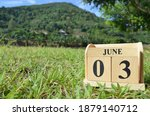 June 3  Country Background For...