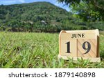 June 19  Country Background For ...