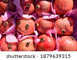 red promegranate in a box | Shutterstock . vector #1879639315