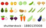 set of vegetables. pairs of... | Shutterstock .eps vector #1880135008