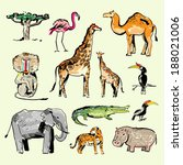 animals of africa. doodles... | Shutterstock .eps vector #188021006