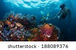 couple snorkeling together over ... | Shutterstock . vector #188089376