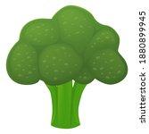 broccoli food fruit emoji...   Shutterstock .eps vector #1880899945