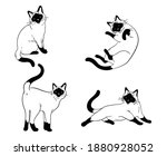 set or siamese cats.  ollection ...   Shutterstock .eps vector #1880928052
