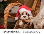 Puppy Toy In A Santa Claus Hat...
