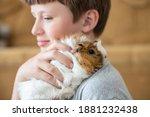 Boy Hugs A Guinea Pig On His...