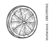 lemon slice sketch engraving... | Shutterstock .eps vector #1881390562
