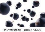 blackcurrant berries levitate... | Shutterstock . vector #1881473308