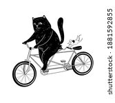 Cat And Mouse Ride A Bicycle. ...