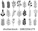 collection forest fern... | Shutterstock .eps vector #1882206175