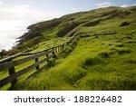 Pasture   New Zealand