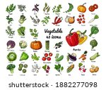 vector colored food icons... | Shutterstock .eps vector #1882277098
